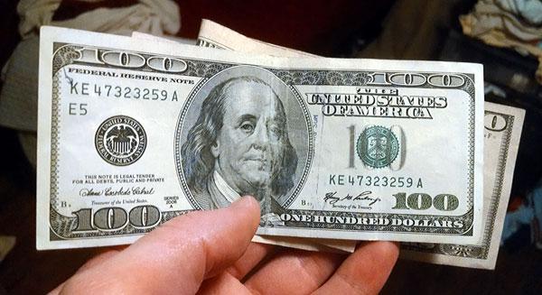 Dog Grooming Money