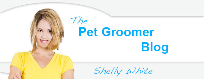 The Pet Groomer Blog